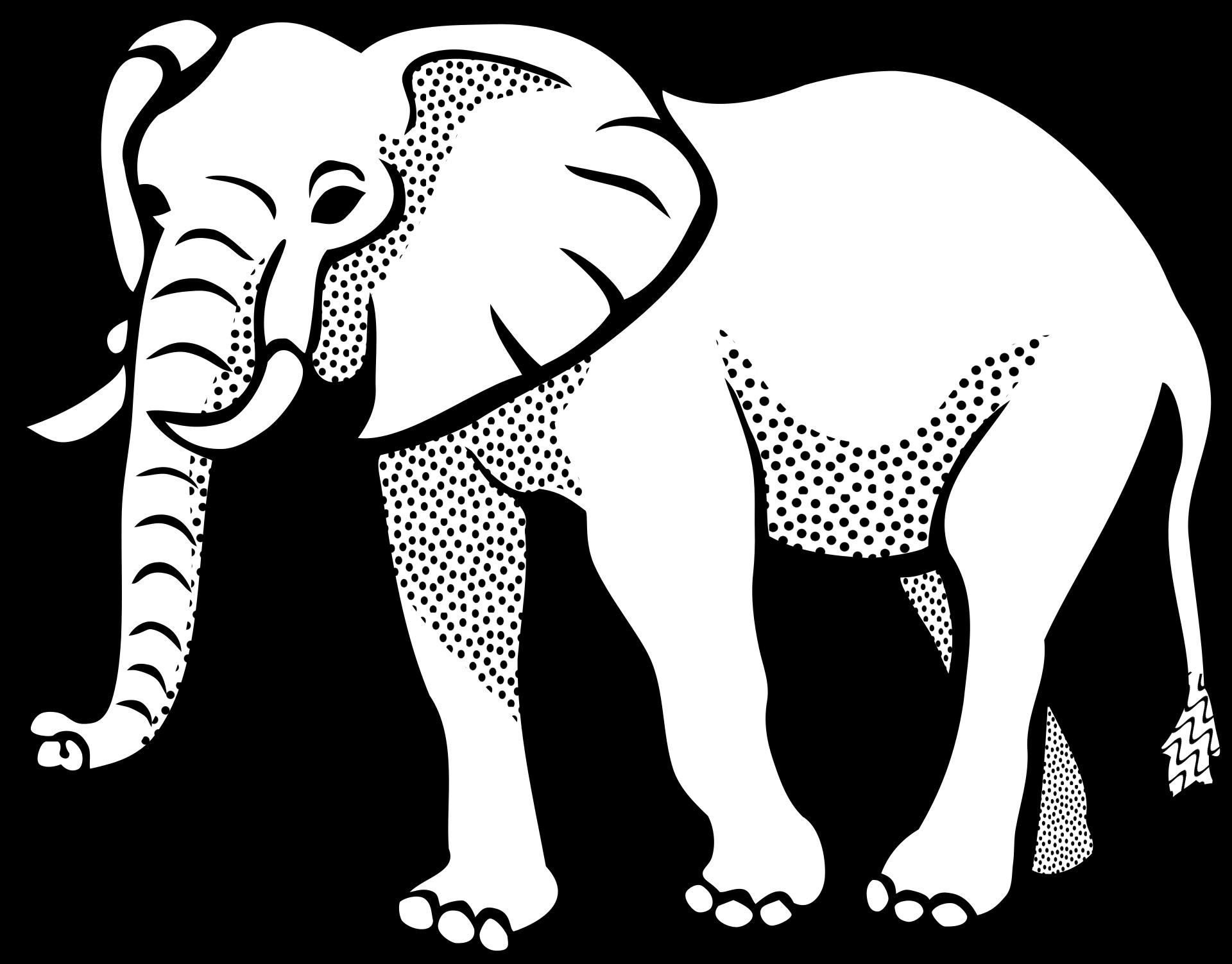 elefanten kennenlernen  informationen und malvorlagen für
