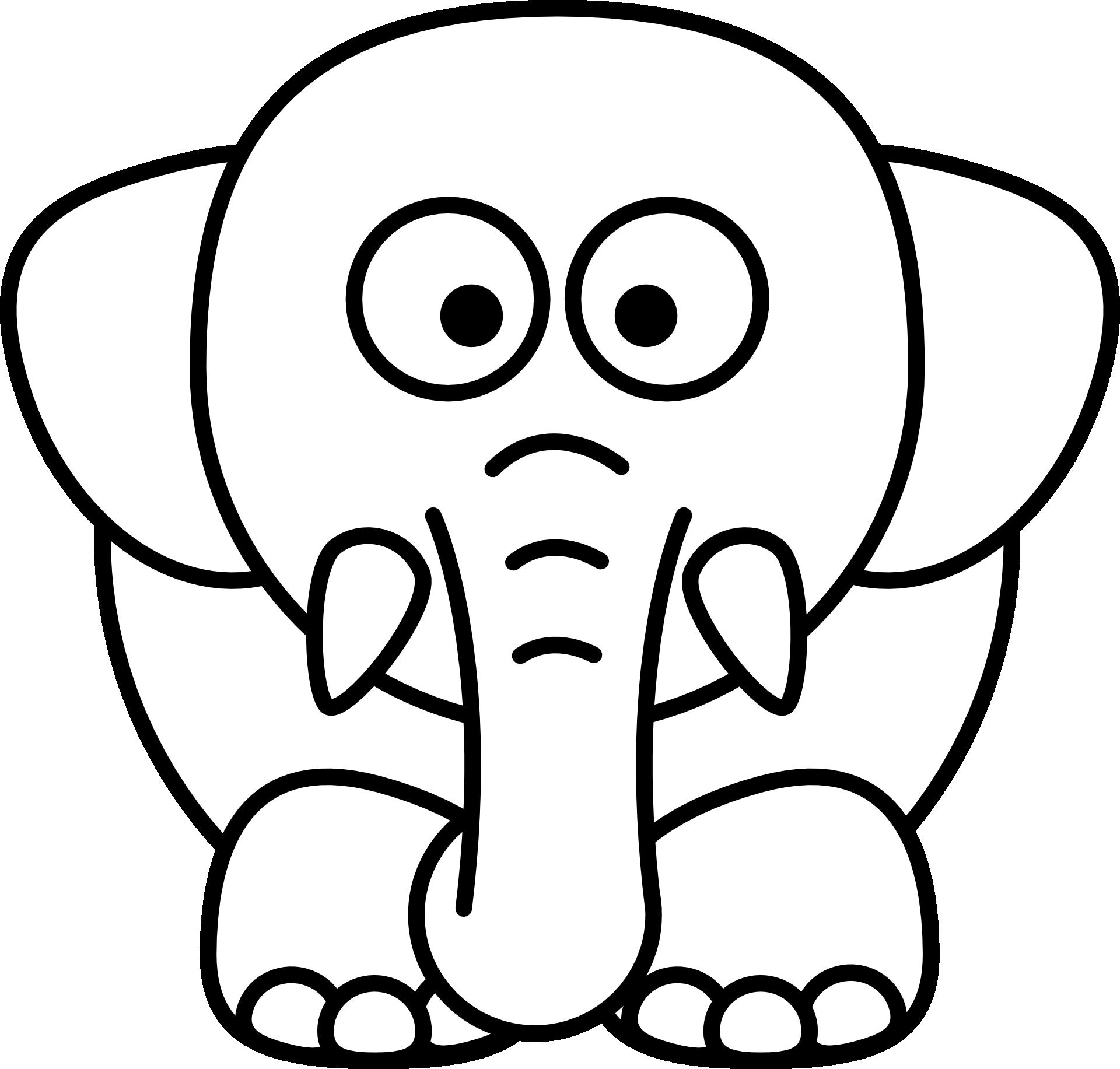 elefanten kennenlernen | informationen und malvorlagen für