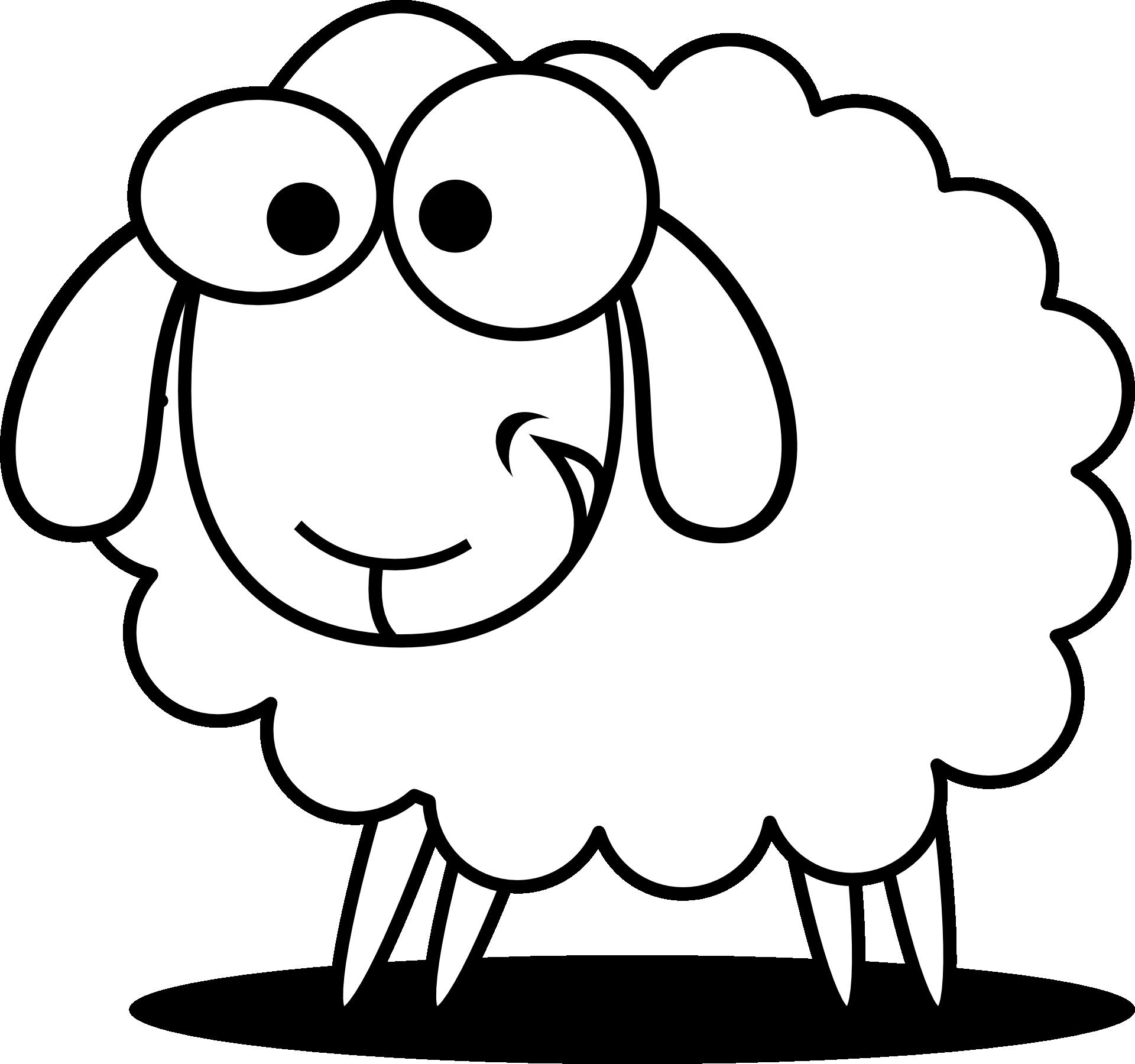 Schafe kennenlernen  Informationen und Malvorlagen für Kinder ✓