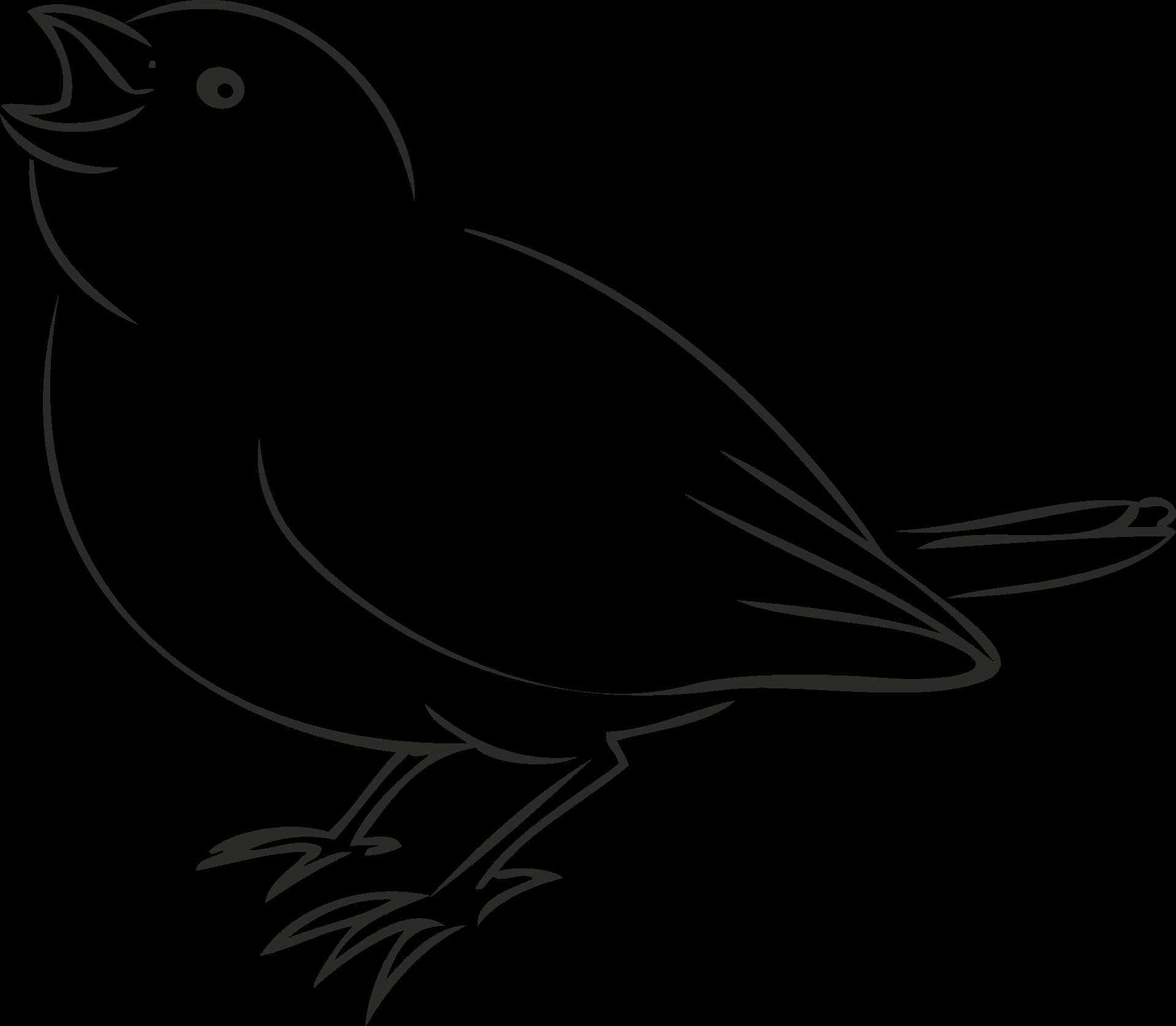 vögel kennenlernen | informationen und malvorlagen für kinder